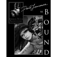 david-lawrence-book-cover-reBOUND